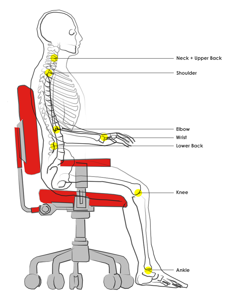 Key Areas of Interests for Modern Ergonomic Furniture
