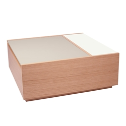 Dann Contemporary Coffee Table In Oak