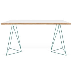 Flow White Top + Green Metal Base Modern Desk by TemaHome