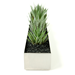 Gus* Modern Stainless Steel Contemporary Planter