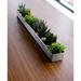 Gus* Modern Brushed Stainless Steel Fruit Trough Contemporary Planter