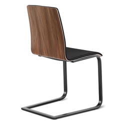 Jasmine Matte + Walnut + Black Modern Dining Chair