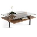 Terrace Modern Rectangular Walnut Coffee Table by BDI