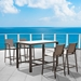 Vargas Outdoor Modern Bar Stools and Bar Table