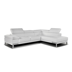 Nicoletti Leather Sectional Sofa